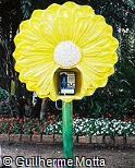 Telefone público em forma de crisântemo