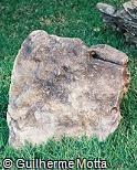 Pedra escultórica natural