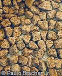 Piso em pedra madeira
