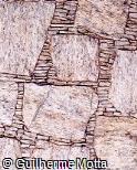 Muro com Pedras Irregulares