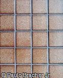 Muro com Pastilhas de Azulejo