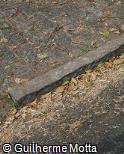 Meio-fio-pedra