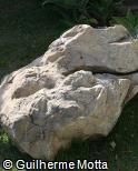Pedra escultórica pontiaguda
