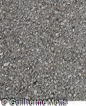 Concreto áspero com pedras